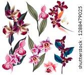 big set of vector orchid... | Shutterstock .eps vector #1288479025