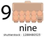 nine egg in carton illustration   Shutterstock .eps vector #1288480525