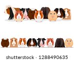 set of guinea pigs group and... | Shutterstock .eps vector #1288490635