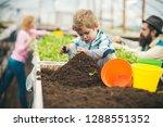 soil preparing. small boy...   Shutterstock . vector #1288551352