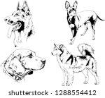 vector drawings sketches...   Shutterstock .eps vector #1288554412