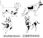 vector drawings sketches...   Shutterstock .eps vector #1288554442