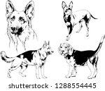 vector drawings sketches...   Shutterstock .eps vector #1288554445