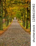 autumn country road  poland... | Shutterstock . vector #1288610482