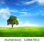 field tree and blue sky | Shutterstock . vector #128867812