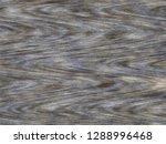 wood floor texture. abstract...   Shutterstock . vector #1288996468
