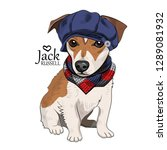 vector dog with blue hat and... | Shutterstock .eps vector #1289081932