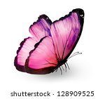 Stock photo pink butterfly isolated on white 128909525