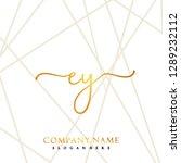 ey initial handwriting logo... | Shutterstock .eps vector #1289232112