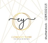 ey initial handwriting logo... | Shutterstock .eps vector #1289232115