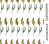 wheat branch illustration | Shutterstock . vector #1289423995