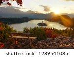 close up lens flare  beautiful... | Shutterstock . vector #1289541085