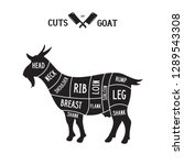 meat cuts   goat. diagrams for... | Shutterstock .eps vector #1289543308
