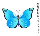 beautiful butterflies  blue... | Shutterstock .eps vector #1289708752