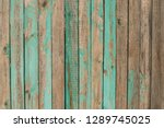 aged natural old green color... | Shutterstock . vector #1289745025