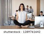 calm young business woman doing ... | Shutterstock . vector #1289761642