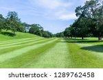 golf course hole fairway trees...   Shutterstock . vector #1289762458