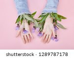 hands and spring flowers are on ... | Shutterstock . vector #1289787178