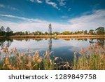 belarusian or russian wooden... | Shutterstock . vector #1289849758