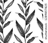vector seamless pattern of... | Shutterstock .eps vector #1289857825