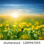 beautiful spring flowered... | Shutterstock . vector #1289967055