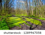 beautiful spring countryside... | Shutterstock . vector #1289967058
