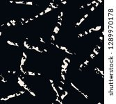 stripe texture pattern. black...   Shutterstock .eps vector #1289970178