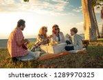 friends eat on meadow happy... | Shutterstock . vector #1289970325
