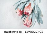 protea flowers bunch. blooming... | Shutterstock . vector #1290022402
