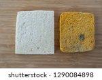 backgrounds top view expired... | Shutterstock . vector #1290084898