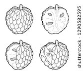 custard apple vector...   Shutterstock .eps vector #1290582595