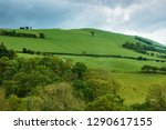 landscape with sheep at hills... | Shutterstock . vector #1290617155