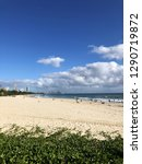 gold coast  queensland ... | Shutterstock . vector #1290719872