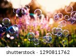 Small photo of beautiful natural background with summer clear green meadow with pink flowers and soap bubbles brightly shimmer and fly in the air at lilac sunset