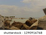 Small photo of Island in Tamp Florida