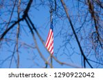 american flag with branches in...   Shutterstock . vector #1290922042