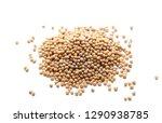 yellow mustard seeds macro... | Shutterstock . vector #1290938785