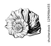 vector hand drawn illustration... | Shutterstock .eps vector #1290986455