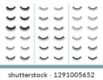 lashes collection. different...   Shutterstock .eps vector #1291005652