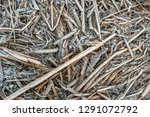 full screen closeup of frosted...   Shutterstock . vector #1291072792