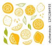 lemons set. whole  half  sliced ... | Shutterstock .eps vector #1291284955