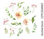 watercolor hand drawing flower... | Shutterstock . vector #1291326865