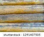 wall wooden pine logs light... | Shutterstock . vector #1291407505