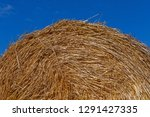 close up of round stack of... | Shutterstock . vector #1291427335
