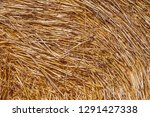 close up of straw in stack | Shutterstock . vector #1291427338