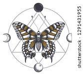 butterfly in triangle. moon... | Shutterstock .eps vector #1291431955