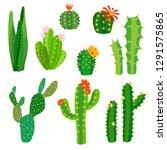 cactus flower. bright cacti... | Shutterstock .eps vector #1291575865