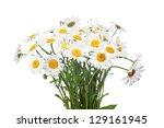 abstract flower background. ...   Shutterstock . vector #129161945
