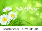 spring background with daisies... | Shutterstock .eps vector #1291734205