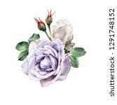 bouquet of roses  watercolor ... | Shutterstock . vector #1291748152